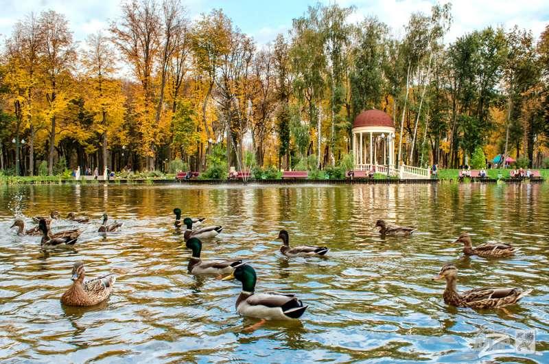 Харьков. Осень